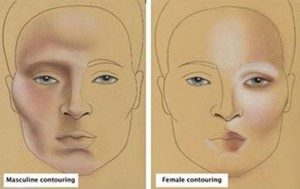 Feminine cheeks, because they are fuller, reflect more light below the eye socket.