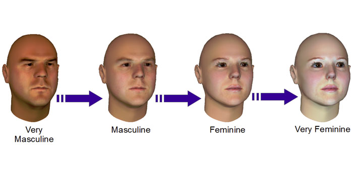 The feminine eyes appear more rounded, where the masculine eyes are more narrow (like slits)