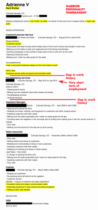 A typical resume you'd receive from a person with the Warrior Temperament