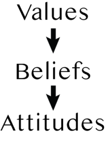 Where to values, beliefs and attitudes come from